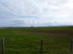 Baleshare farms